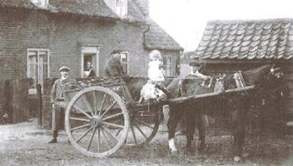 Cardfields horse and cart