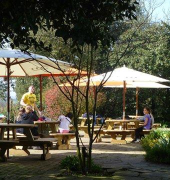 Cardfields picnic area