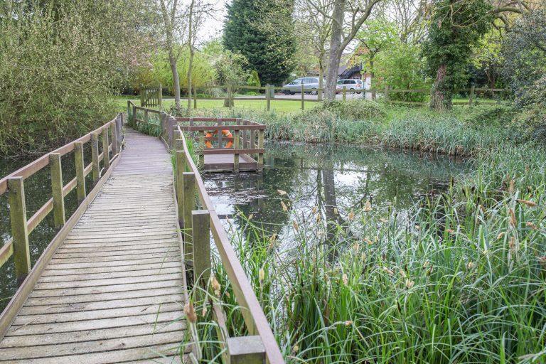 cardfields pond