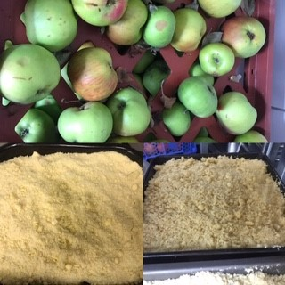 Collage of apples and apple crumble